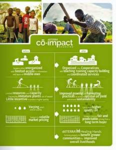 Co-impact Sourcing graphic